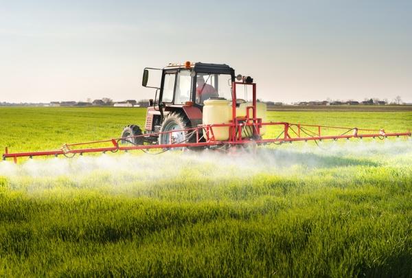 Glyphosat: Schädlichkeit laut Studien bewiesen und in Bier, Brot, Nudeln und Hülsenfrüchten