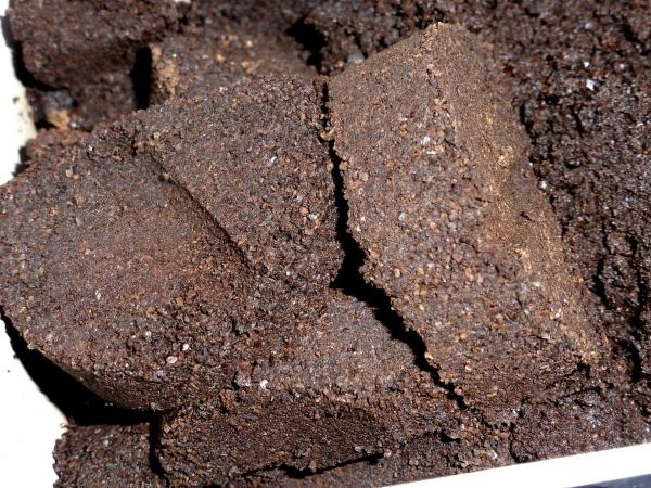 Kaffeesatz Recycling als Dünger für Peeling und mehr