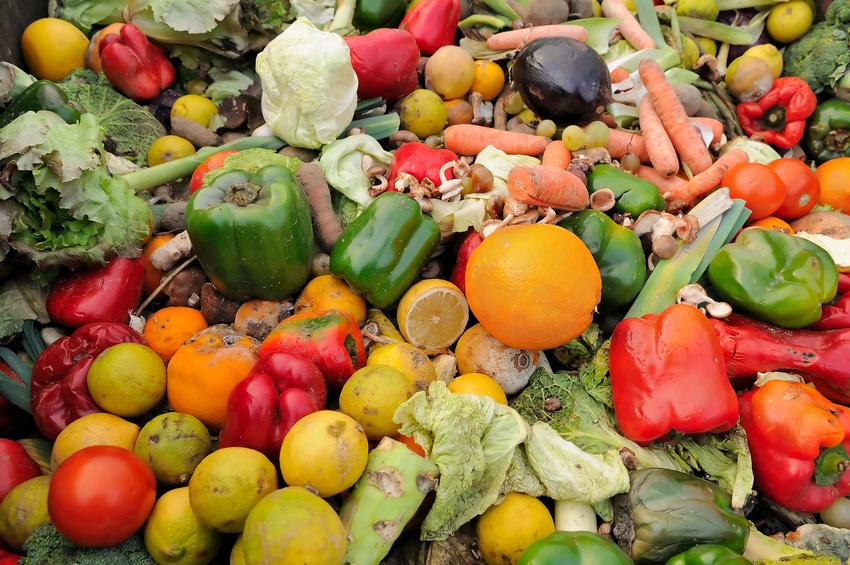 Lebensmittelmüll finden viele Menschen schlimm. Doch kaum jemanden interessiert es, dass gerne auch mal 50 % der Lebensmittel erst gar nicht vom Bauernhof herunterkommen