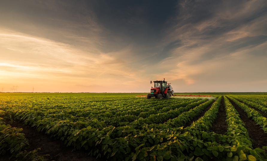 Bauern, Landwirtschaft, Bio und bewußter Konsum