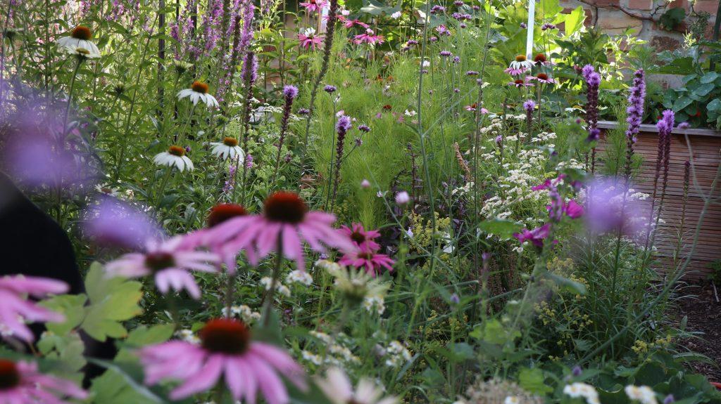 Pflegeleichter und alterngerechter Garten. Hier: Üppiger Blütenflor und ein Hochbeet.