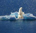 Umweltschutz und Klimaschutz jeder kann etwas tun 1