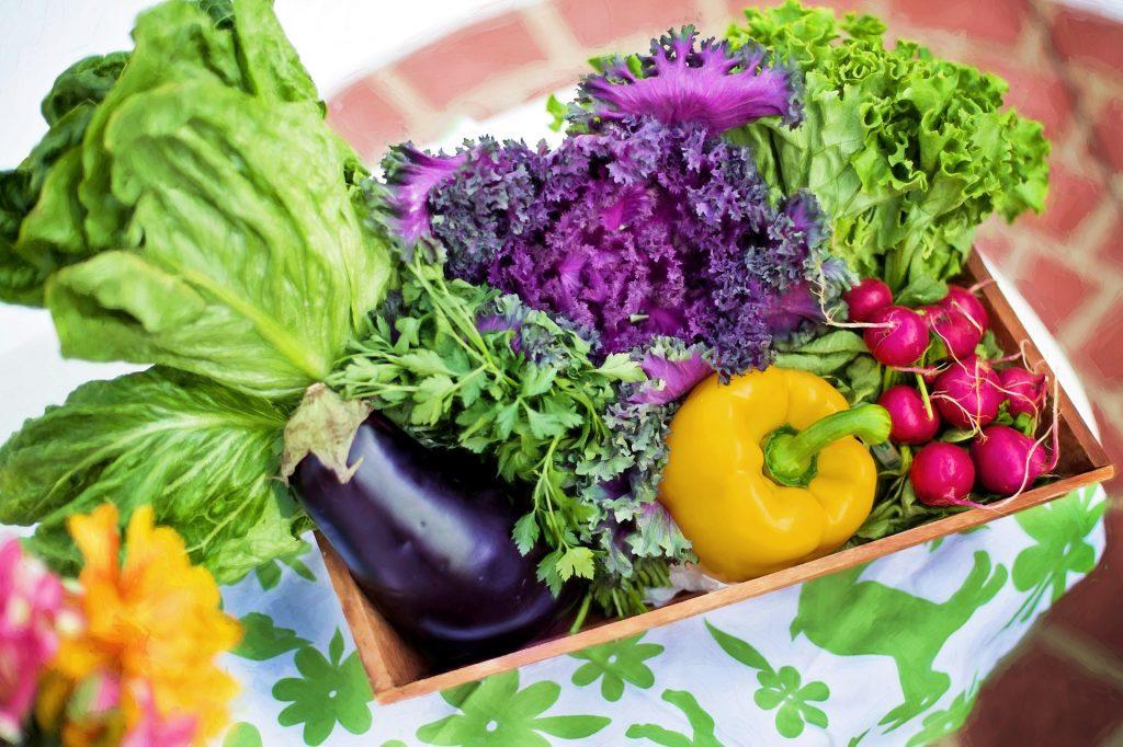 Was ist besser, frisches Gemüse, Tiefkühlkost oder Obst und Gemüse aus der Dose?
